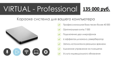 Система YOUR DAY  Virtual - Professional